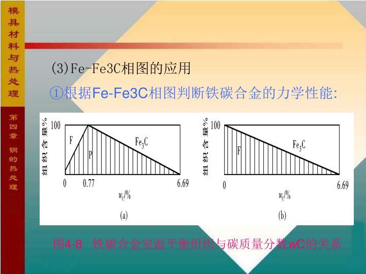 (3)Fe-Fe3C