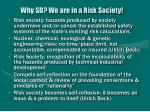why sd we are in a risk society9
