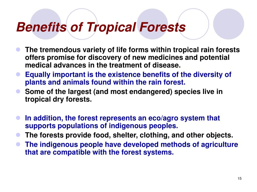 Benefits of Tropical Forests