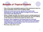 benefits of tropical forests17