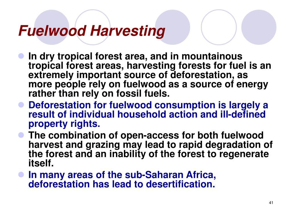 Fuelwood Harvesting