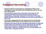 fuelwood harvesting42
