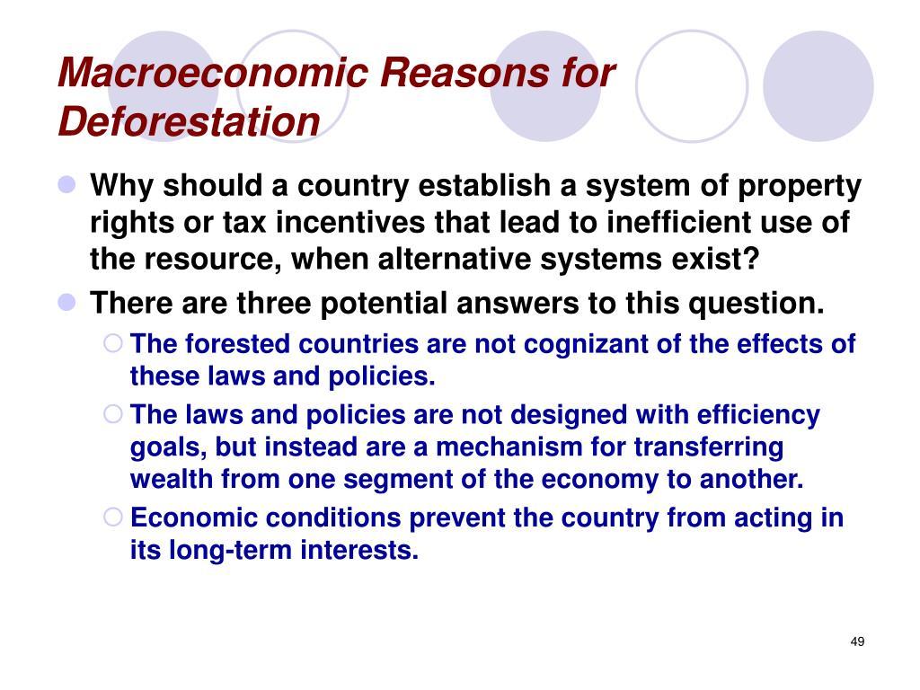 Macroeconomic Reasons for Deforestation