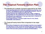 the tropical forestry action plan55