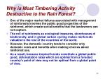 why is most timbering activity destructive to the rain forest29