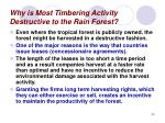 why is most timbering activity destructive to the rain forest30