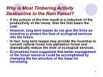 why is most timbering activity destructive to the rain forest31