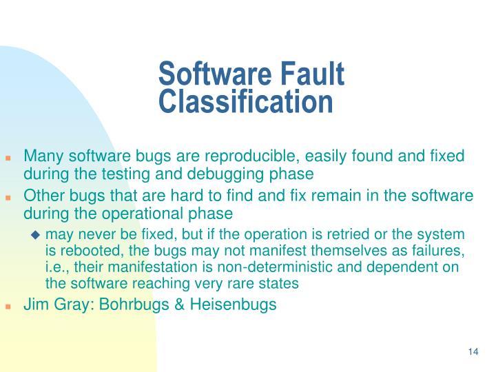 Software Fault Classification