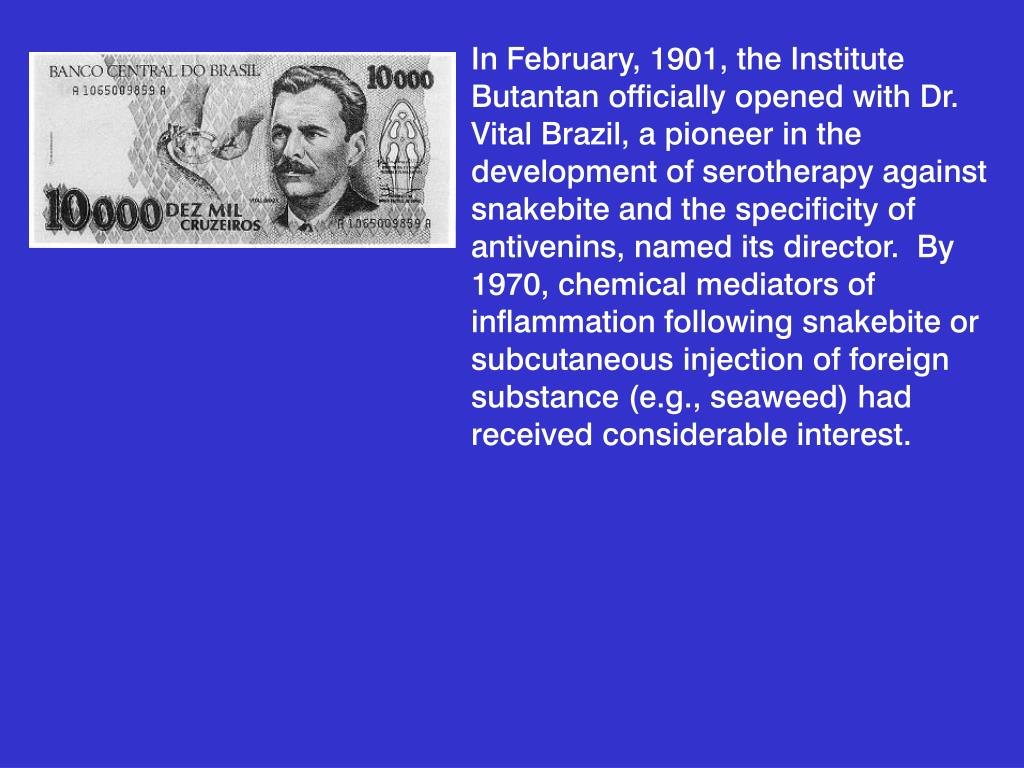 In February, 1901, the Institute Butantan officially opened with Dr. Vital Brazil, a pioneer in the development of serotherapy against snakebite and the specificity of antivenins, named its director.  By 1970, chemical mediators of inflammation following snakebite or subcutaneous injection of foreign substance (e.g., seaweed) had received considerable interest.