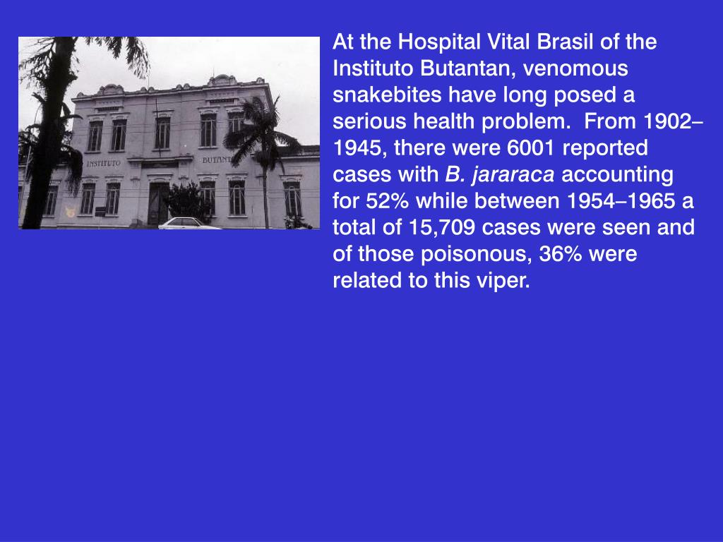 At the Hospital Vital Brasil of the Instituto Butantan, venomous snakebites have long posed a serious health problem.  From 1902–1945, there were 6001 reported cases with
