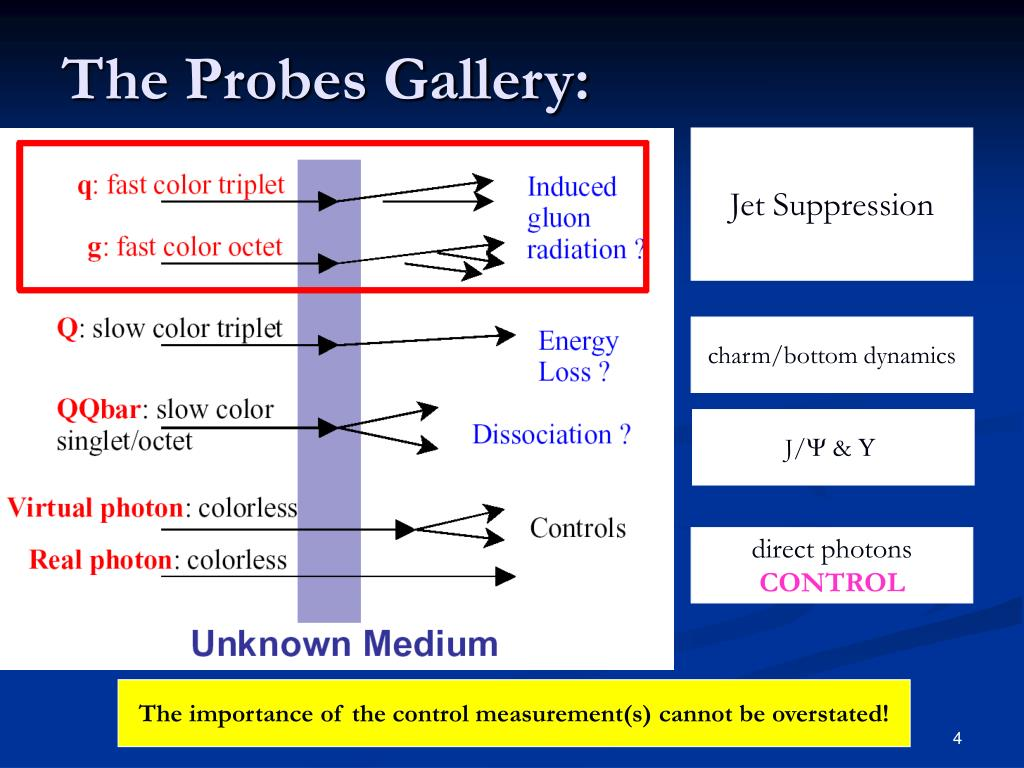 The Probes Gallery:
