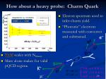 how about a heavy probe charm quark