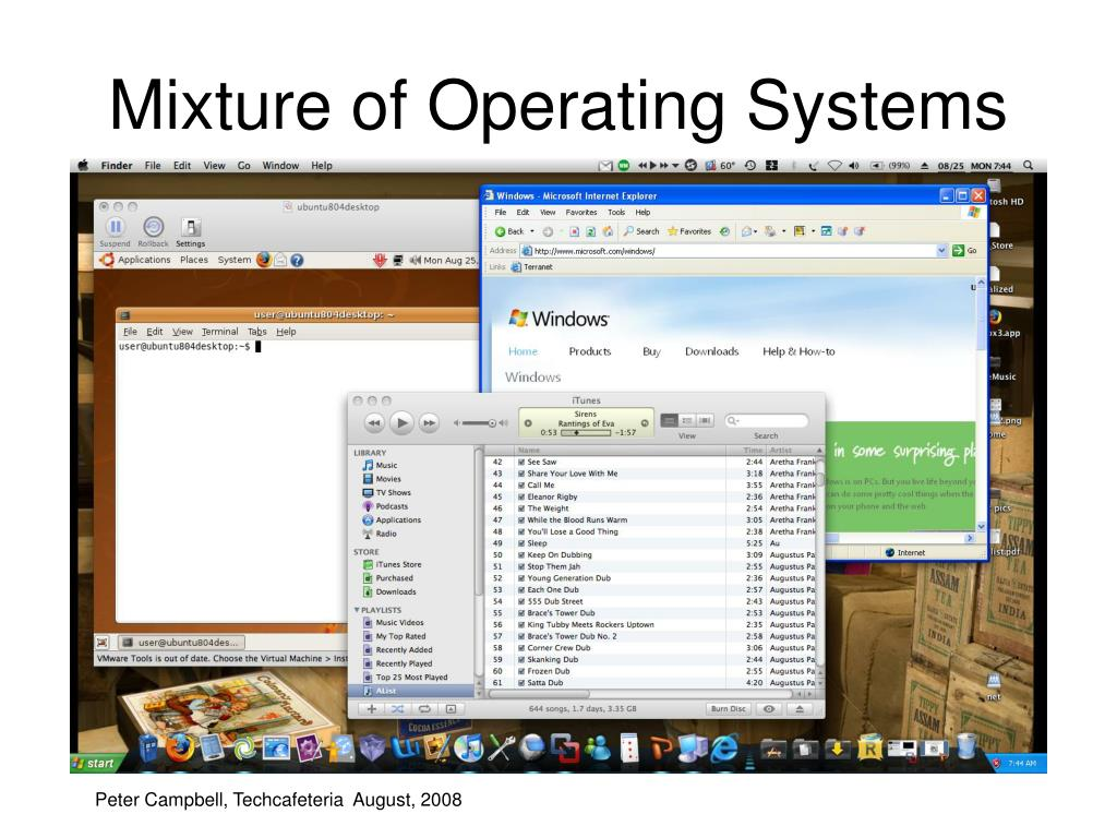 Mixture of Operating Systems on One Server
