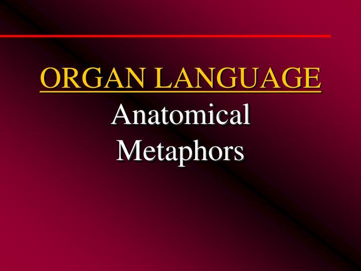 ORGAN LANGUAGE