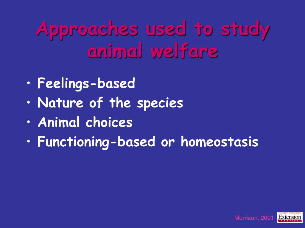 Approaches used to study animal welfare