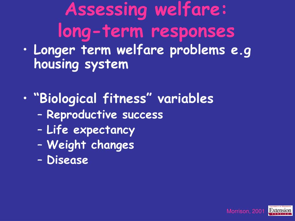 Assessing welfare: