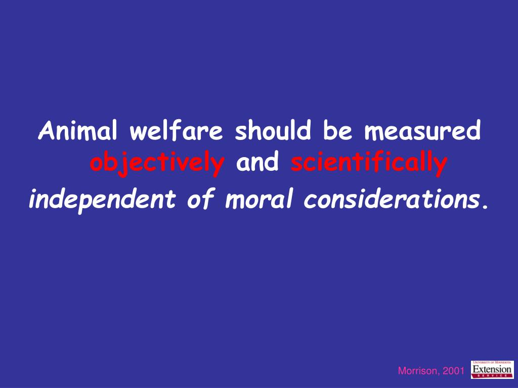 Animal welfare should be measured