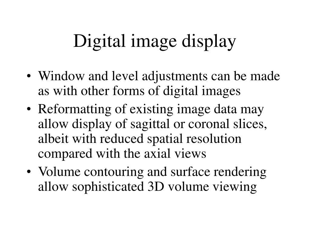 Digital image display
