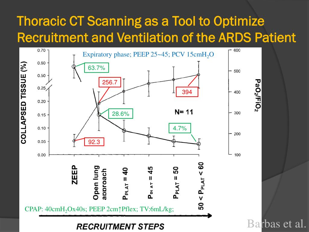 Thoracic CT Scanning as a Tool to Optimize Recruitment and Ventilation of the ARDS Patient