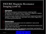 figure magnetic resonance imaging cont d