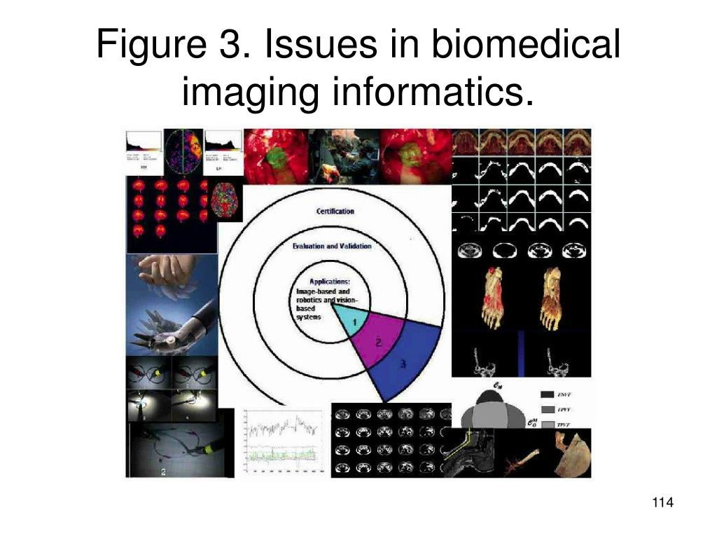 Figure 3. Issues in biomedical imaging informatics.