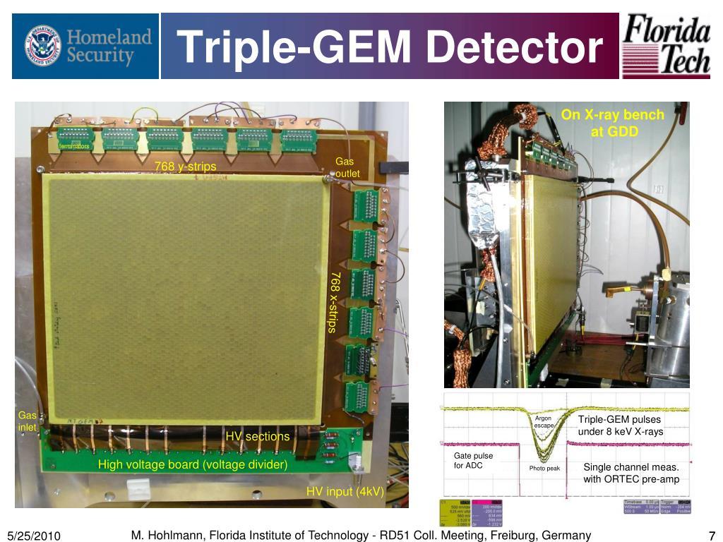 Triple-GEM Detector