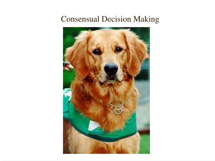 Consensual Decision Making