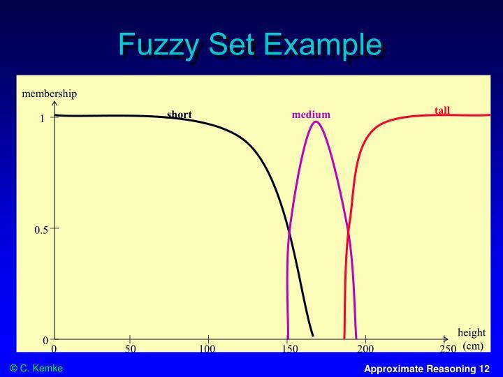 Fuzzy Set Example