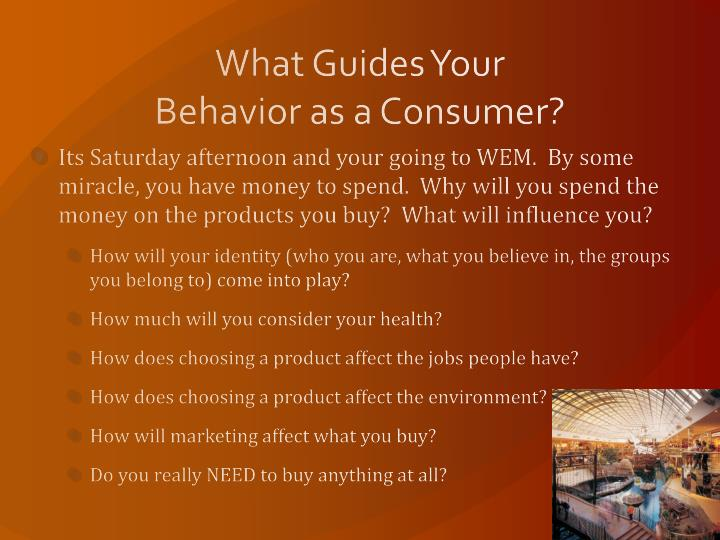 What Guides Your Behavior as a Consumer?