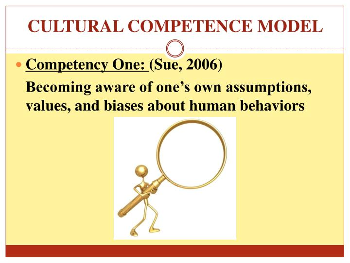 CULTURAL COMPETENCE MODEL