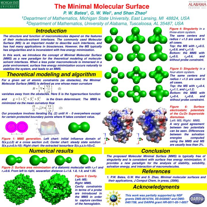 For a given set of atomic constraints (as obstacles), the Minimal Molecular Surface (MMS) is defin...