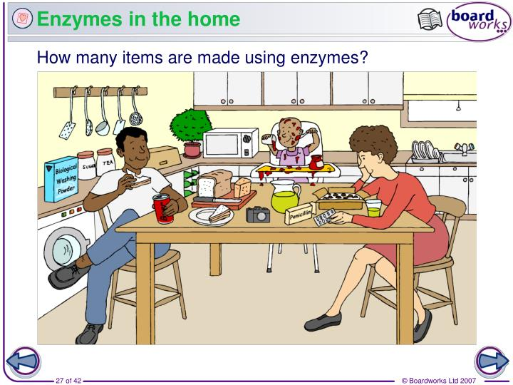 Enzymes in the home