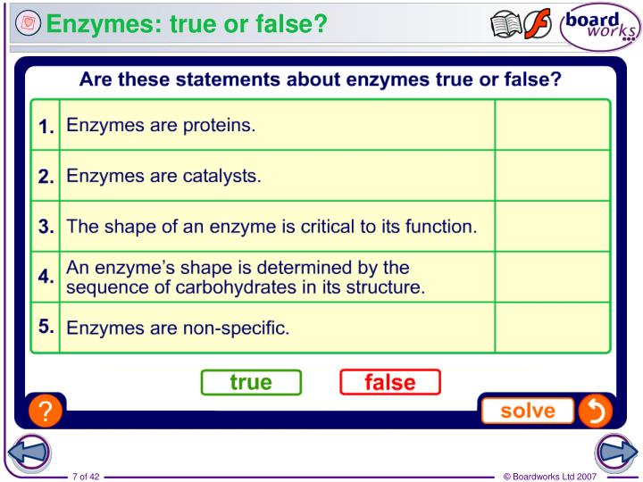 Enzymes: true or false?