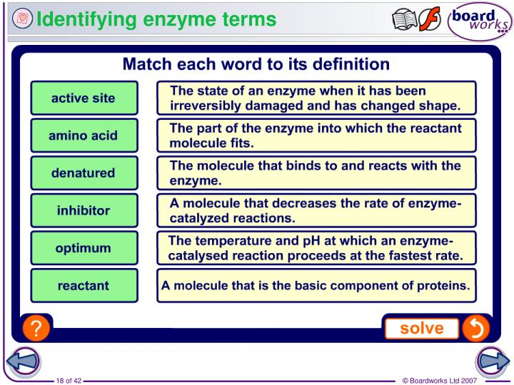 Identifying enzyme terms