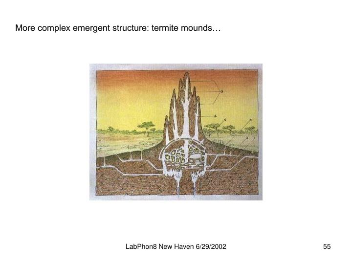 More complex emergent structure: termite mounds…