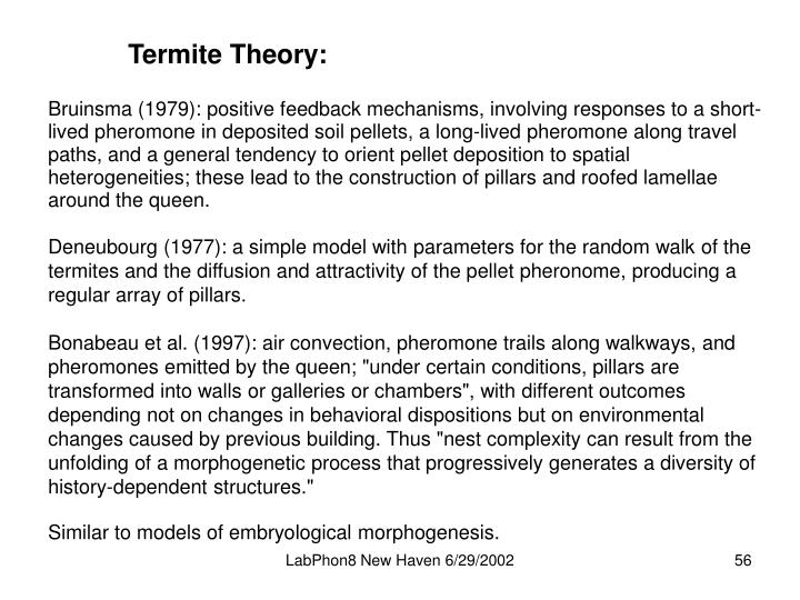Termite Theory: