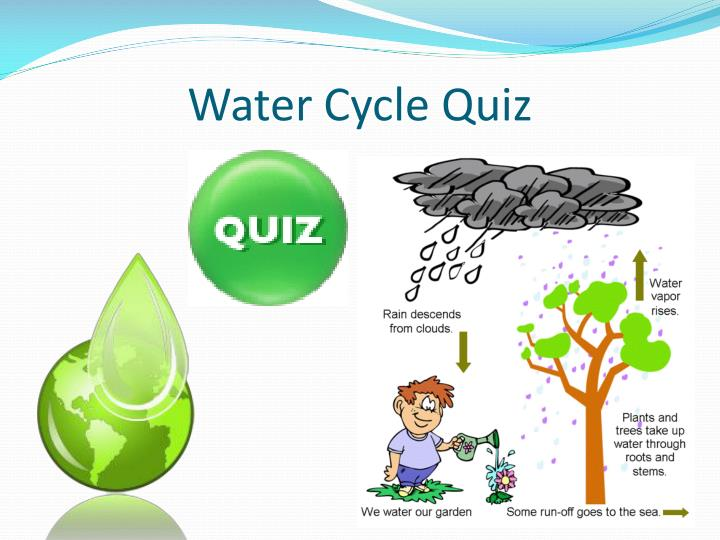 Water cycle quiz