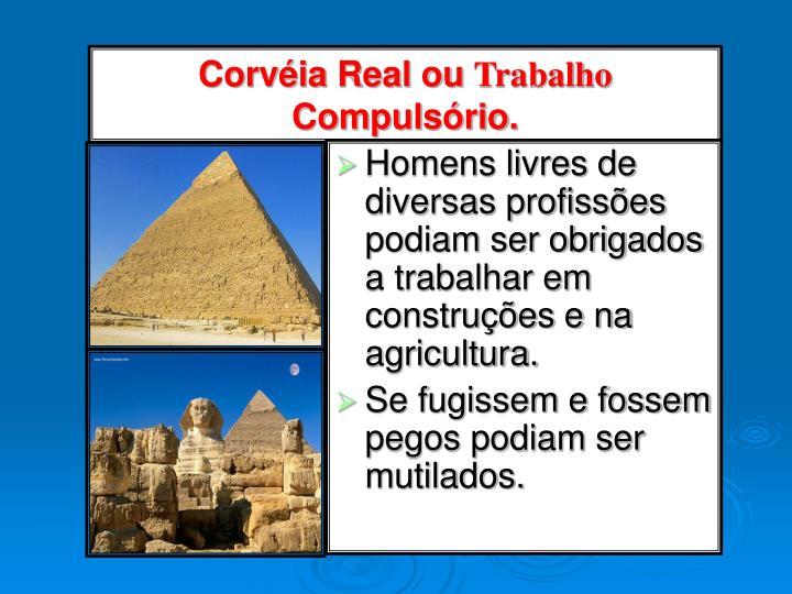 Homens livres de diversas profissões podiam ser obrigados a trabalhar em construções e na agricultura.
