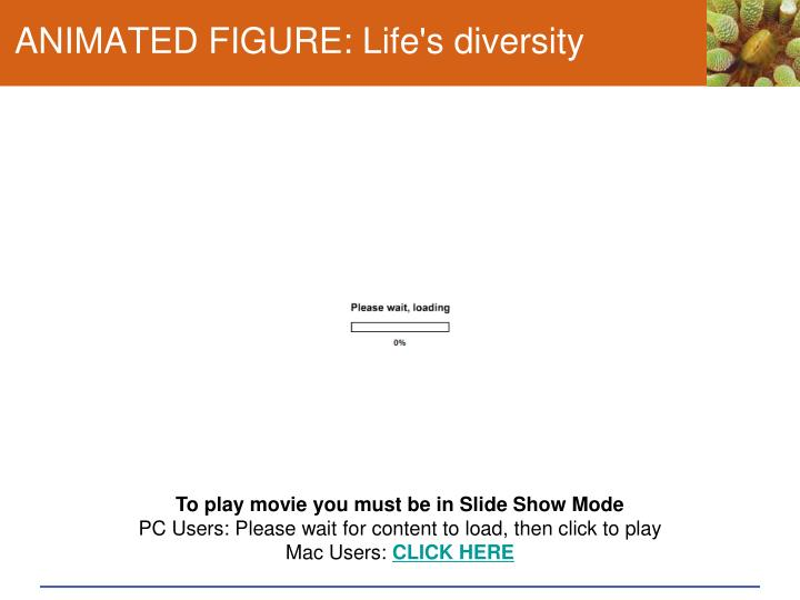 ANIMATED FIGURE: Life's diversity