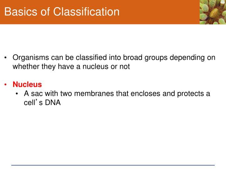 Basics of Classification