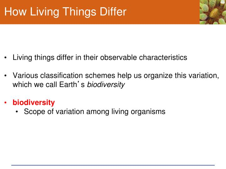 How Living Things Differ