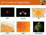 life s levels of organization