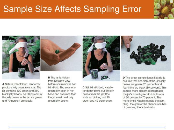 Sample Size Affects Sampling Error