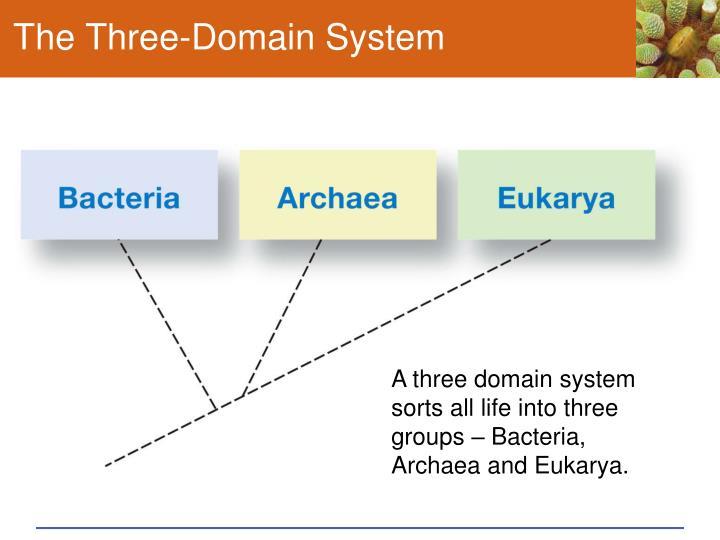 The Three-Domain System