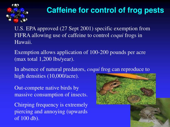 Caffeine for control of frog pests