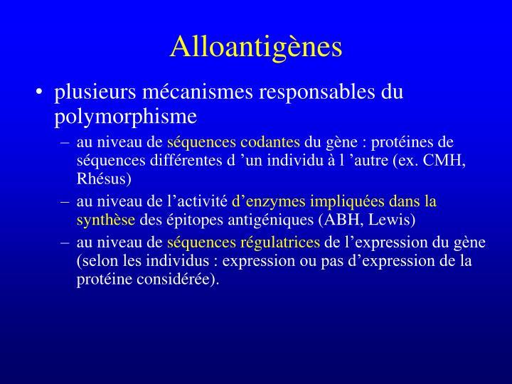 plusieurs mécanismes responsables du polymorphisme