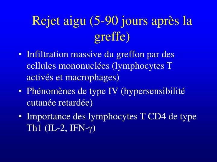 Rejet aigu (5-90 jours après la greffe)