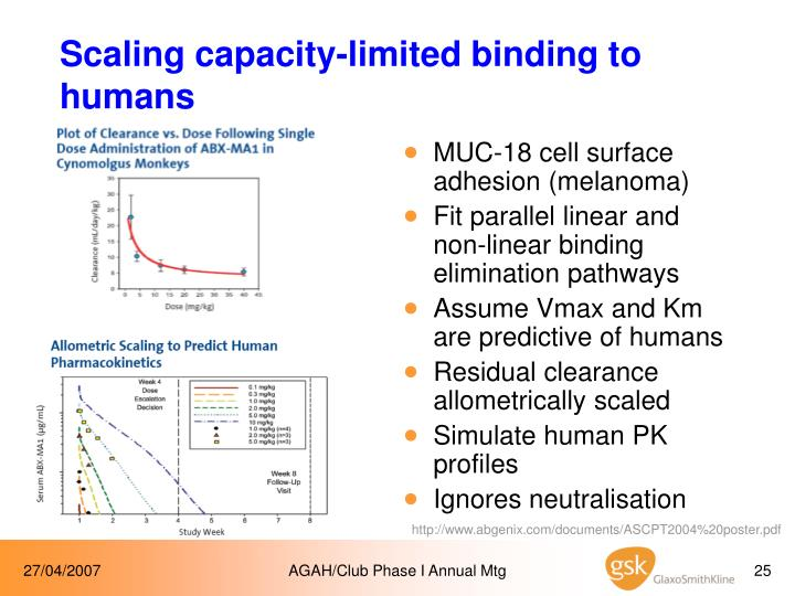 Scaling capacity-limited binding to humans