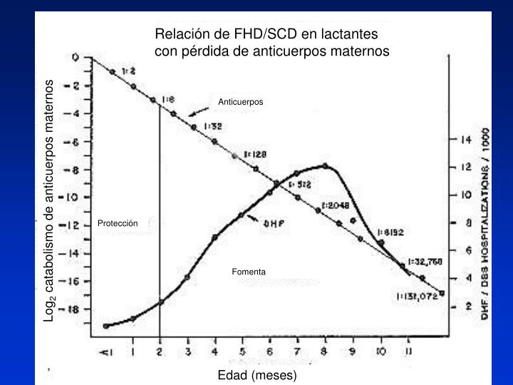 Relación de FHD/SCD en lactantes       con pérdida de anticuerpos maternos