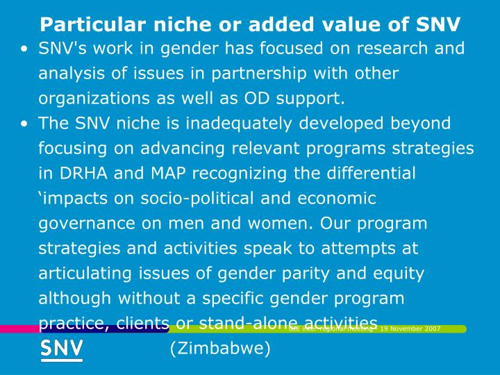Particular niche or added value of SNV
